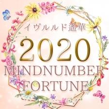 イヴルルド遙華のマインドナンバー占い【2020年上半期の運勢】