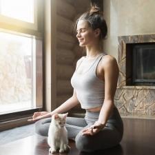 猫ヨガは「メンタル強化」も期待できる!【ヨガ×アニマルセラピーの相乗効果】