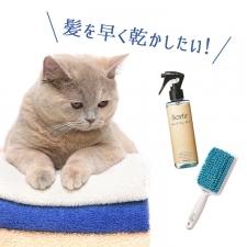 髪をはやく乾かしたーい!速乾アウトバスヘアアイテムはコチラ♡