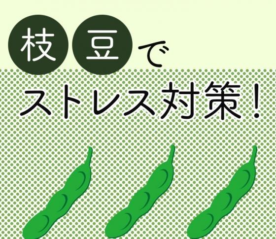 【女性の味方イソフラボンたっぷり】枝豆がストレスを和らげてくれる!