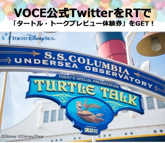 【VOCE公式TwitterをRT】「タートル・トーク」プレビューご招待が当たるチャンス!
