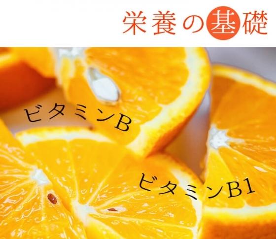 【ビタミンB、ビタミンB1ほか】ビタミン12種類についてまとめ。