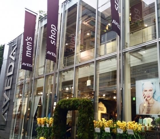 アヴェダの旗艦店がリニューアルオープン! 美と健康を生み出すサロン&スパに|よぎさんぽvol.2