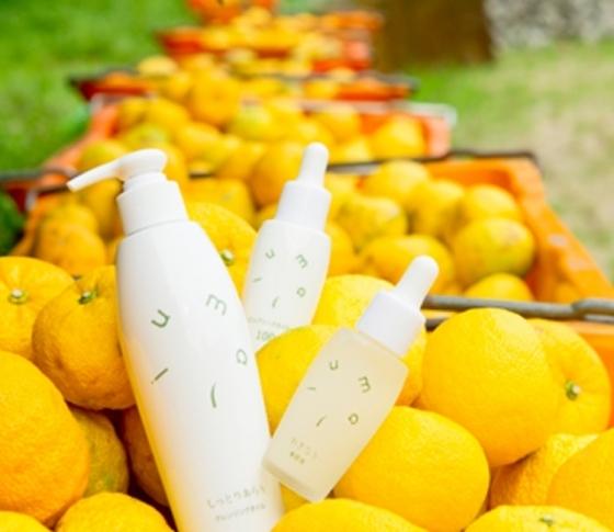 日本各地のご当地コスメ探訪♪見た目もかわいい【柑橘系コスメ編】