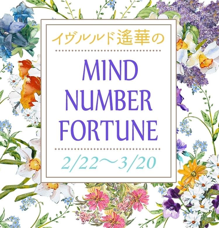 【2/22~3/20】イヴルルド遙華さんの「マインドナンバー占い」、あなたの運気はいかに?