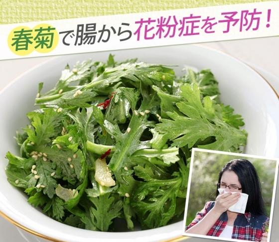 【美肌効果や肩こり軽減も!】春菊を食べて腸から花粉症予防!