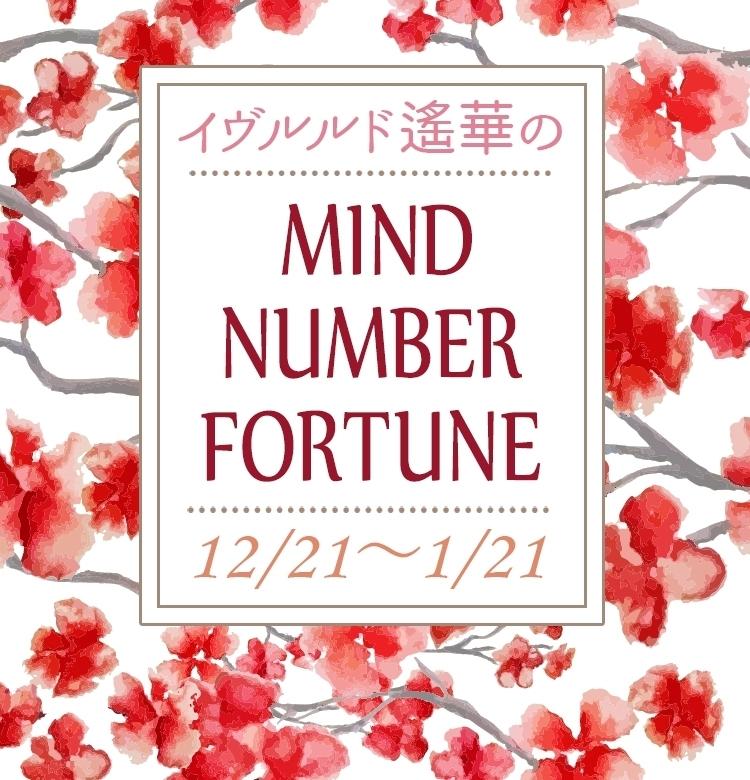 【12/21~1/21】イヴルルド遙華さんの「マインドナンバー占い」、あなたの運気はいかに?