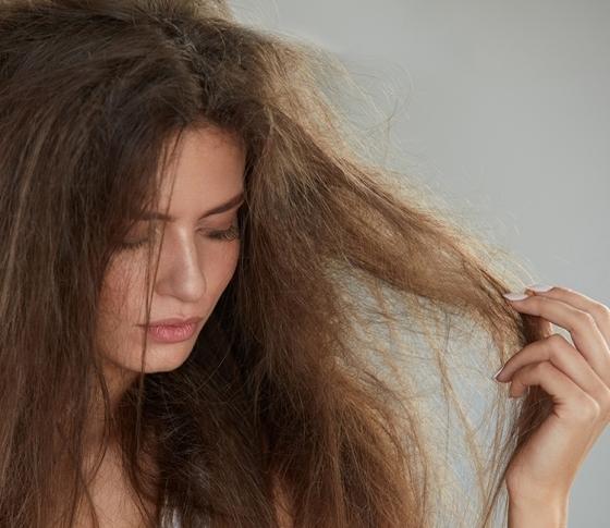部屋の乾燥が、パサつき広がる髪の原因になるって知ってた!?【ビューティQ&A】