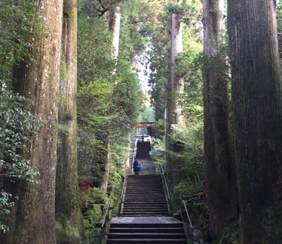 関東随一の霊地、箱根神社