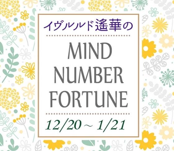 【12/20~1/21】イヴルルド遙華さんの「マインドナンバー占い」、あなたの運気はいかに?