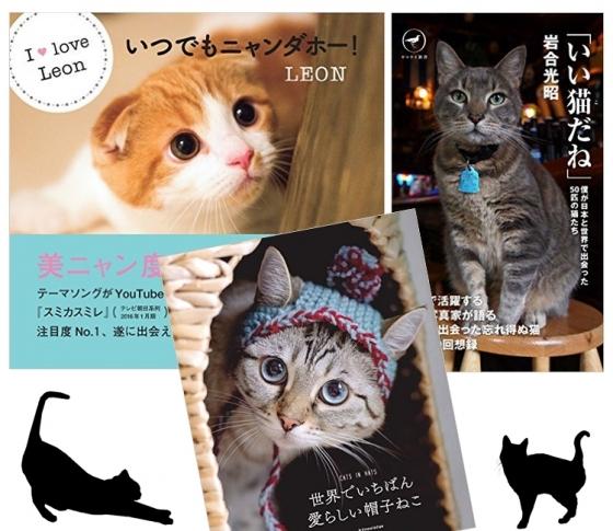 猫好きに超オススメしたい、ニャンと!な猫本厳選3冊!