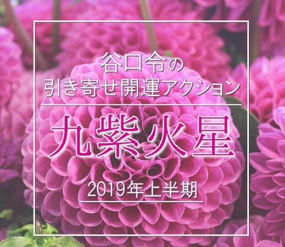 【2019年上半期】九紫火星は何をやってもうまく行く年!【谷口令の引き寄せ開運アクションアドバイス】