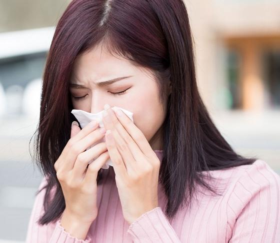 【花粉症・風邪対策】おすすめハーブティーの効能・味わいまで徹底解説!