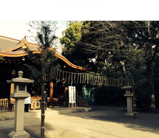 忙しすぎる!は運気もダウン?癒しのパワースポット、渋谷氷川神社