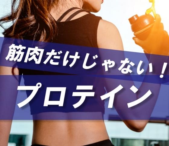【森星、泉里香、入山杏奈も実感】筋肉をつけるだけじゃない!? プロテインの効果とは【ダイエット、スキンケア、頭皮ケア】