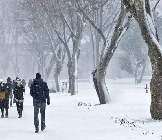 【通勤途中、滑らず歩く!】「雪の日リスク」を回避する方法5つ