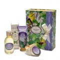 Limy Lavender Kit