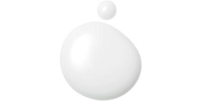 SHISEIDO パーフェクト UVプロテクション S